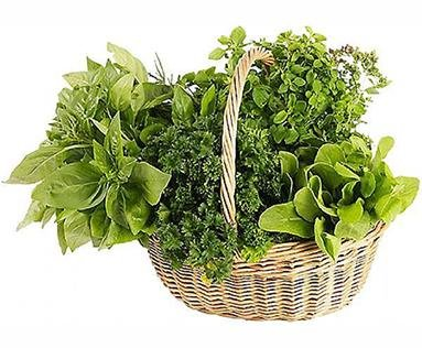 Herbs & Vegetables